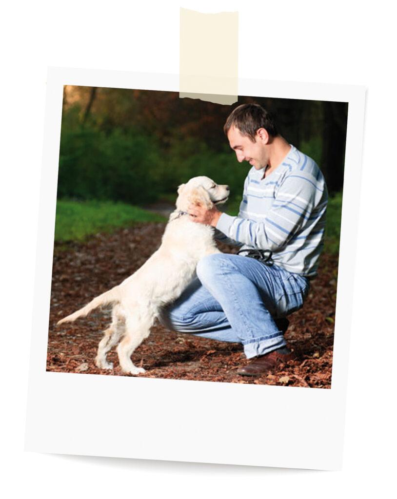 Buddha Dogs Hundeschule gewaltfreies Training