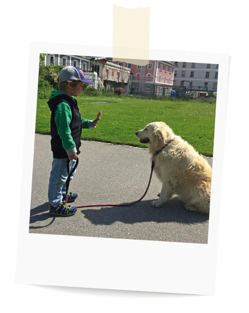Wunschziele Hundecoaching Ausbildung Buddha Dogs Allgäu